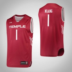 Temple Owls #1 Lena Niang Authentic College Basketball Jersey Red