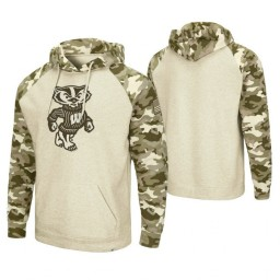 Wisconsin Badgers Oatmeal OHT Military Appreciation Desert Camo Hoodie
